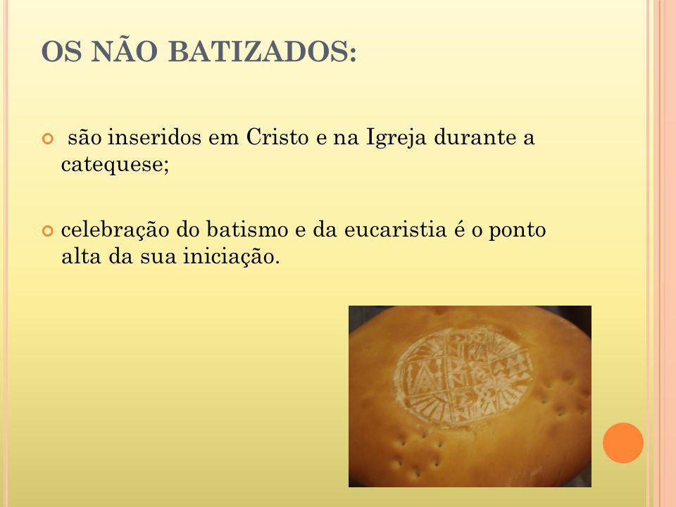 OS NÃO BATIZADOS: são inseridos em Cristo e na Igreja durante a catequese; celebração do batismo e da eucaristia é o ponto alta da sua iniciação.