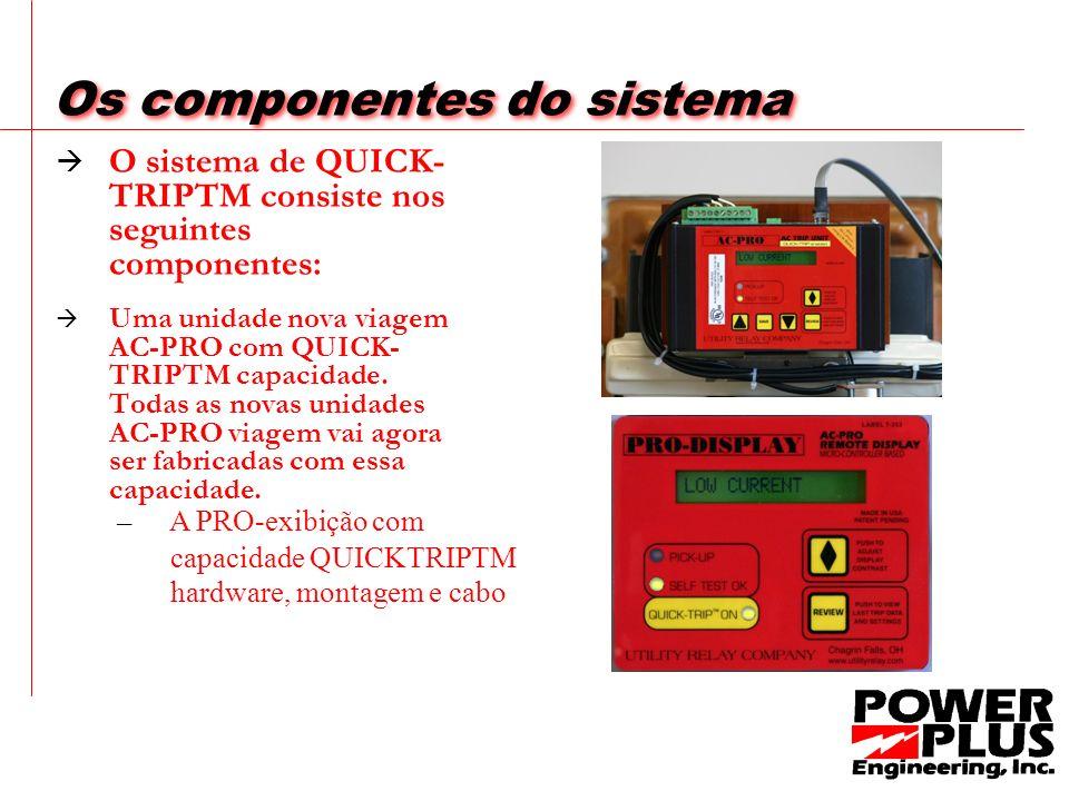 Os componentes do sistema