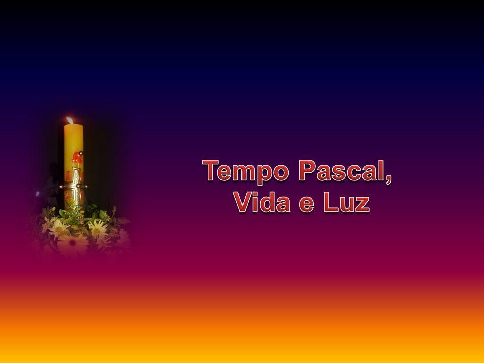 Tempo Pascal, Vida e Luz