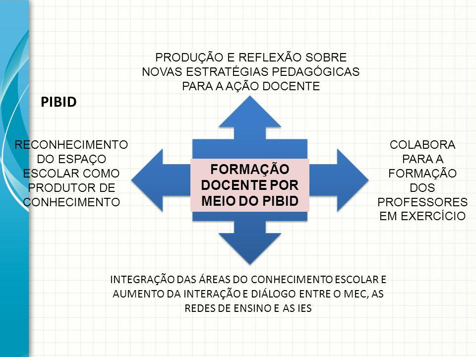 FORMAÇÃO DOCENTE POR MEIO DO PIBID