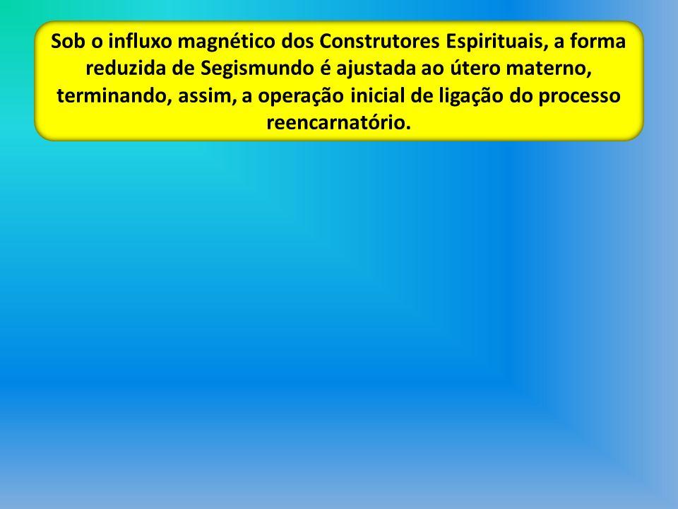 Sob o influxo magnético dos Construtores Espirituais, a forma reduzida de Segismundo é ajustada ao útero materno, terminando, assim, a operação inicial de ligação do processo reencarnatório.