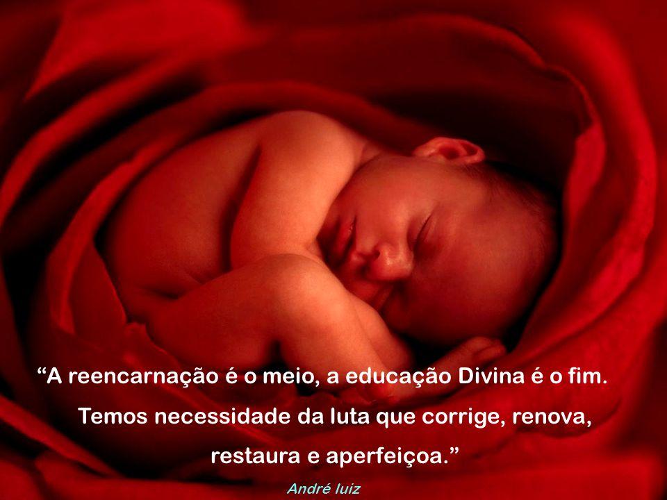A reencarnação é o meio, a educação Divina é o fim