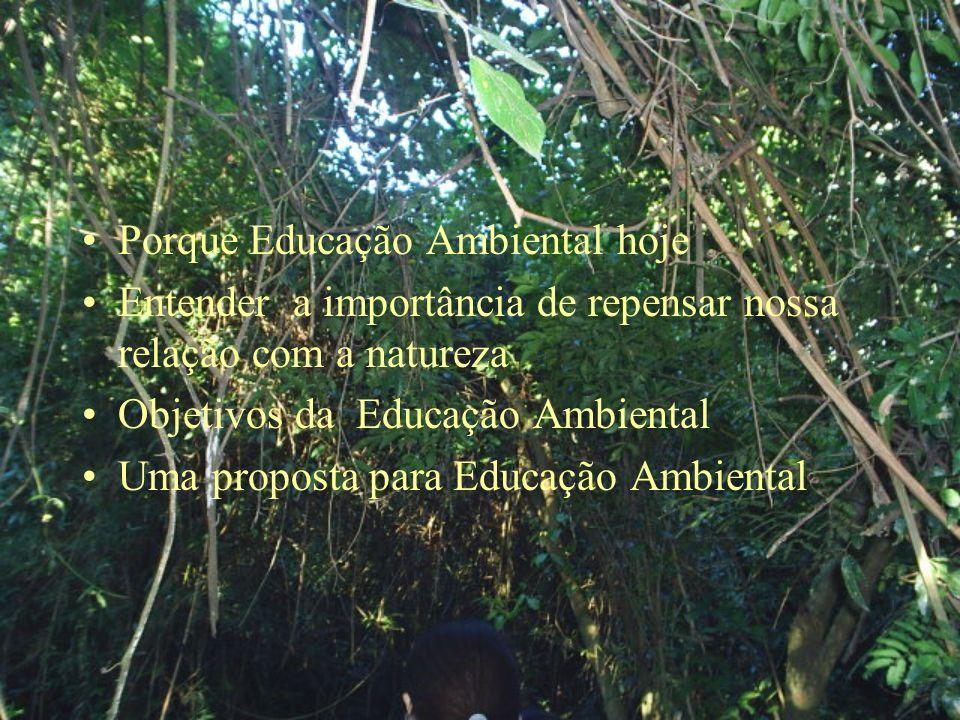 Porque Educação Ambiental hoje