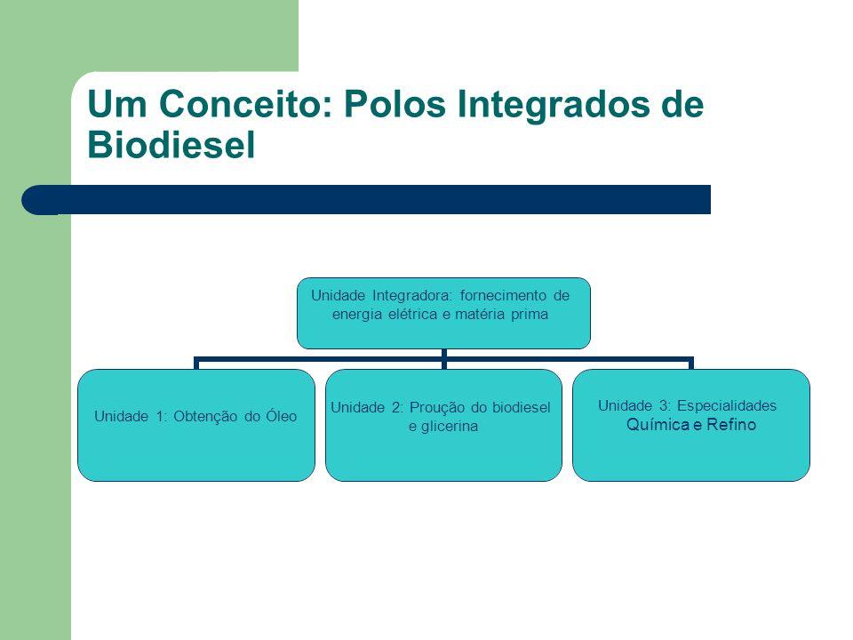Um Conceito: Polos Integrados de Biodiesel