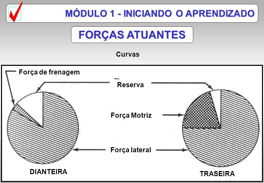 FORÇAS ATUANTES MÓDULO 1 - INICIANDO O APRENDIZADO Curvas