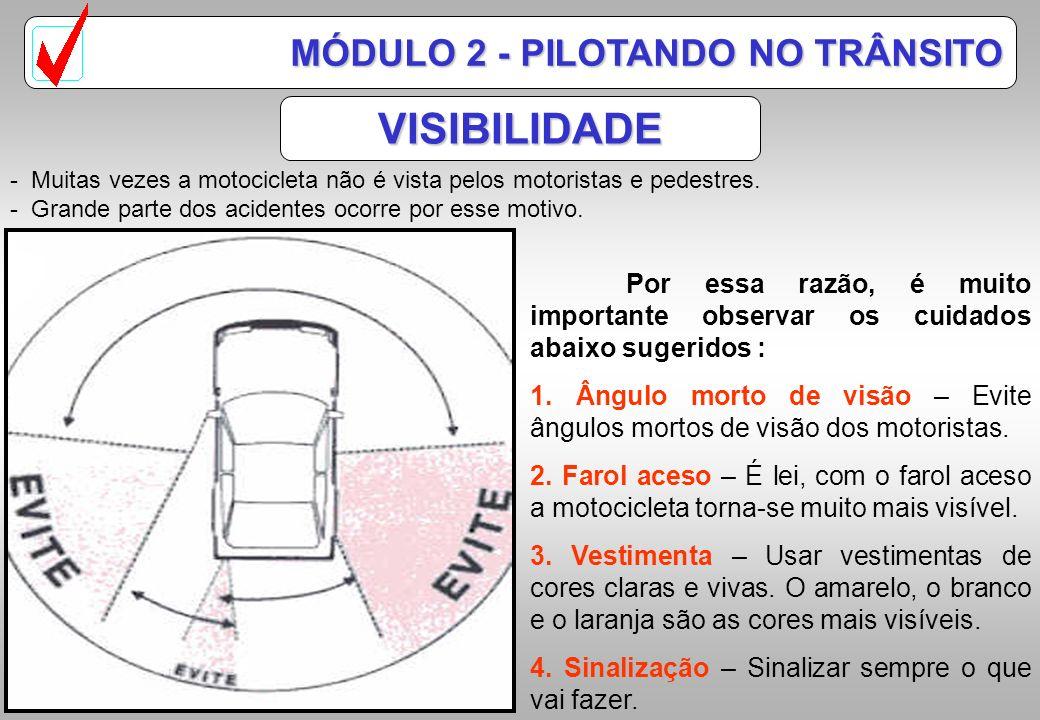 VISIBILIDADE MÓDULO 2 - PILOTANDO NO TRÂNSITO