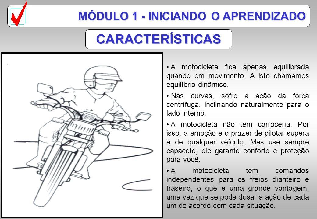 CARACTERÍSTICAS MÓDULO 1 - INICIANDO O APRENDIZADO