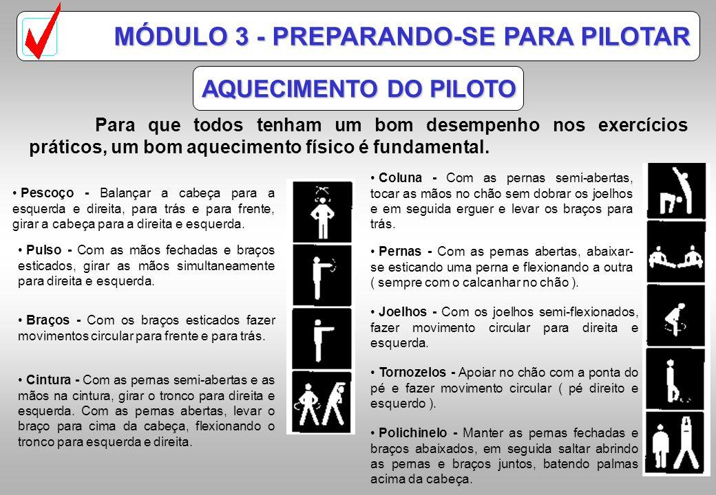 MÓDULO 3 - PREPARANDO-SE PARA PILOTAR