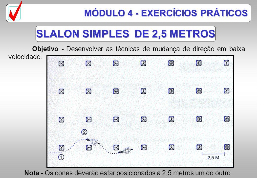 SLALON SIMPLES DE 2,5 METROS