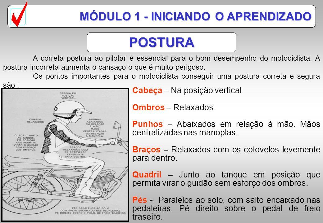 POSTURA MÓDULO 1 - INICIANDO O APRENDIZADO