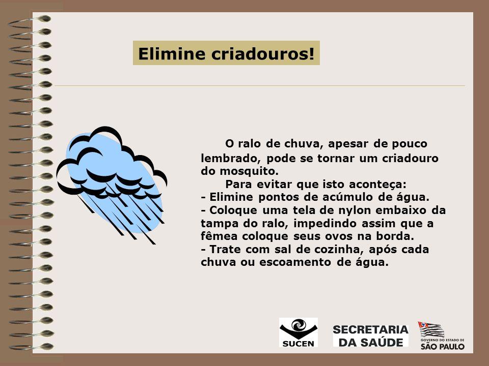 Elimine criadouros! O ralo de chuva, apesar de pouco lembrado, pode se tornar um criadouro do mosquito.