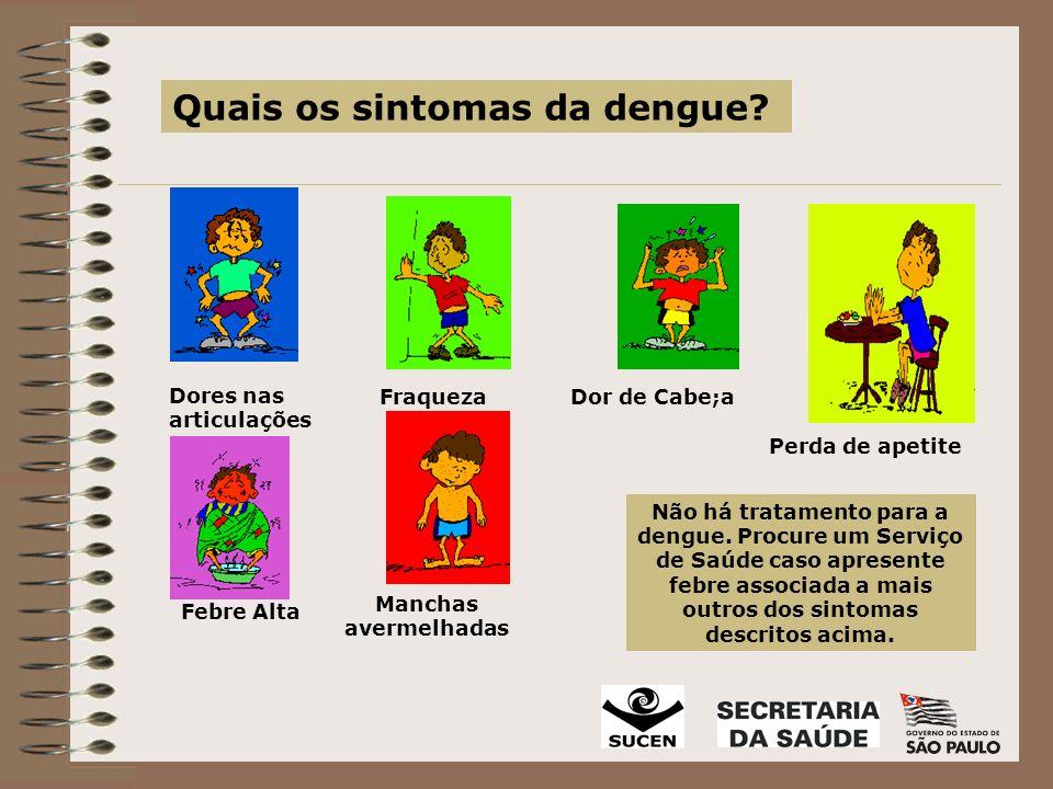 Quais os sintomas da dengue