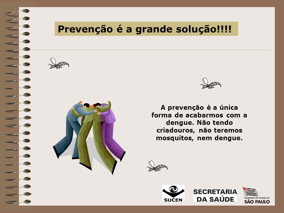Prevenção é a grande solução!!!!