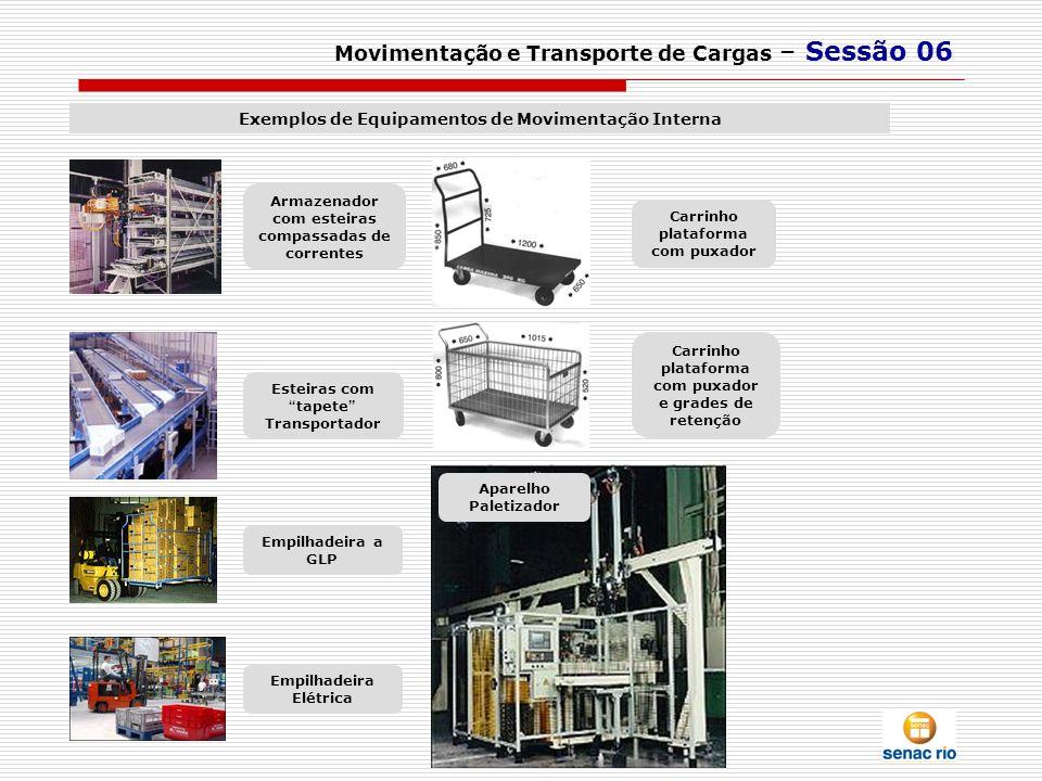 Movimentação e Transporte de Cargas – Sessão 06