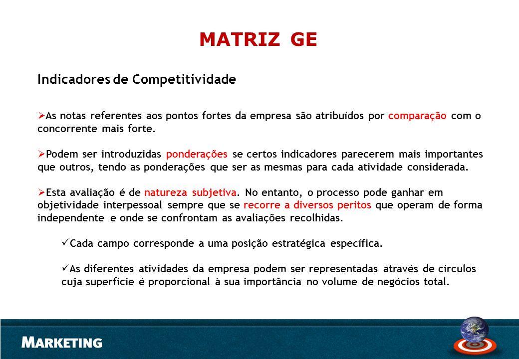 MATRIZ GE Indicadores de Competitividade
