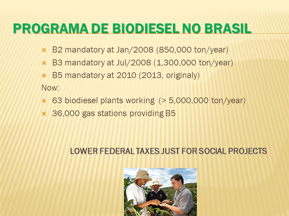 ProgramA de biodiesel no brasil