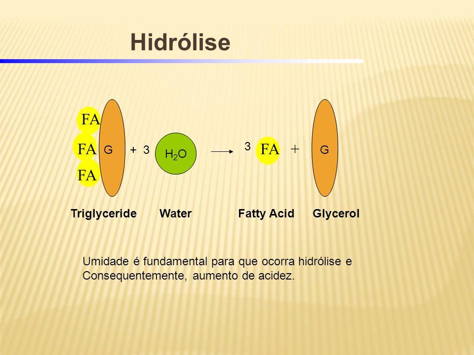Hidrólise FA FA FA + FA H2O 3 G + 3 G Triglyceride Water Fatty Acid