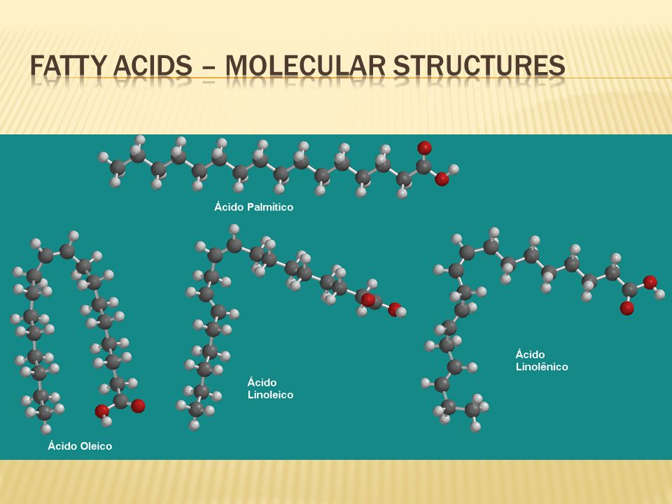 Fatty Acids – Molecular Structures