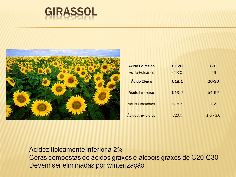 GIRASSOL Acidez tipicamente inferior a 2%
