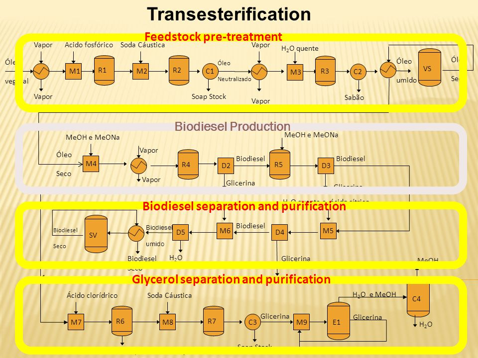 Transesterification Feedstock pre-treatment Biodiesel Production