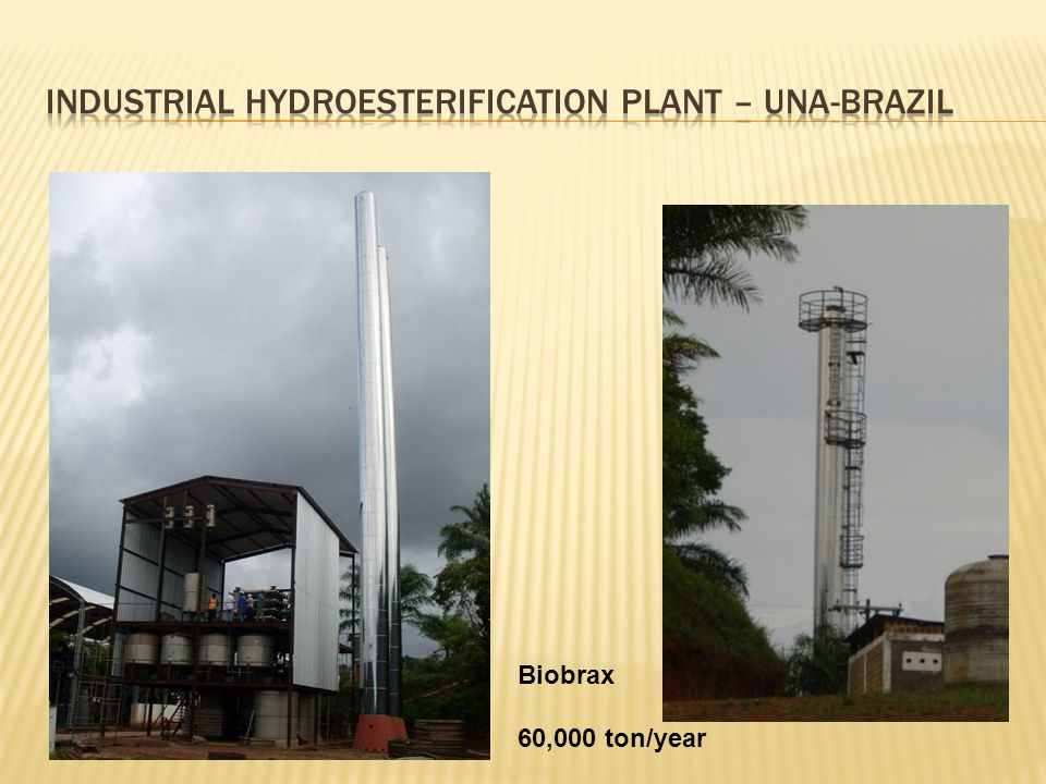 industrial hydroesterification plant – UNA-brazil