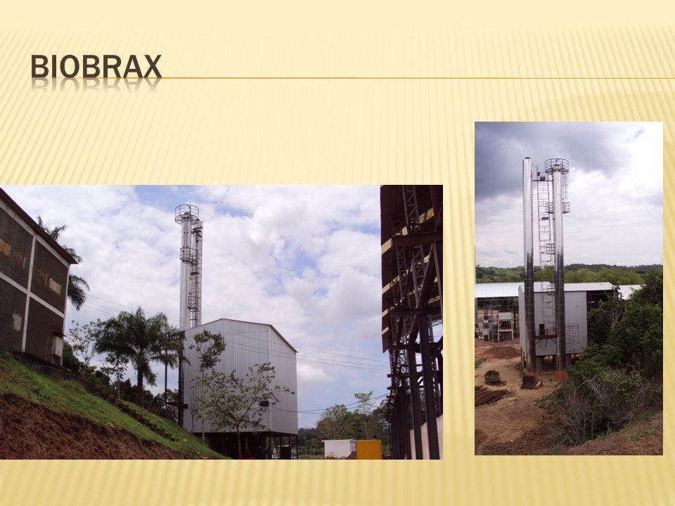 BIOBRAX