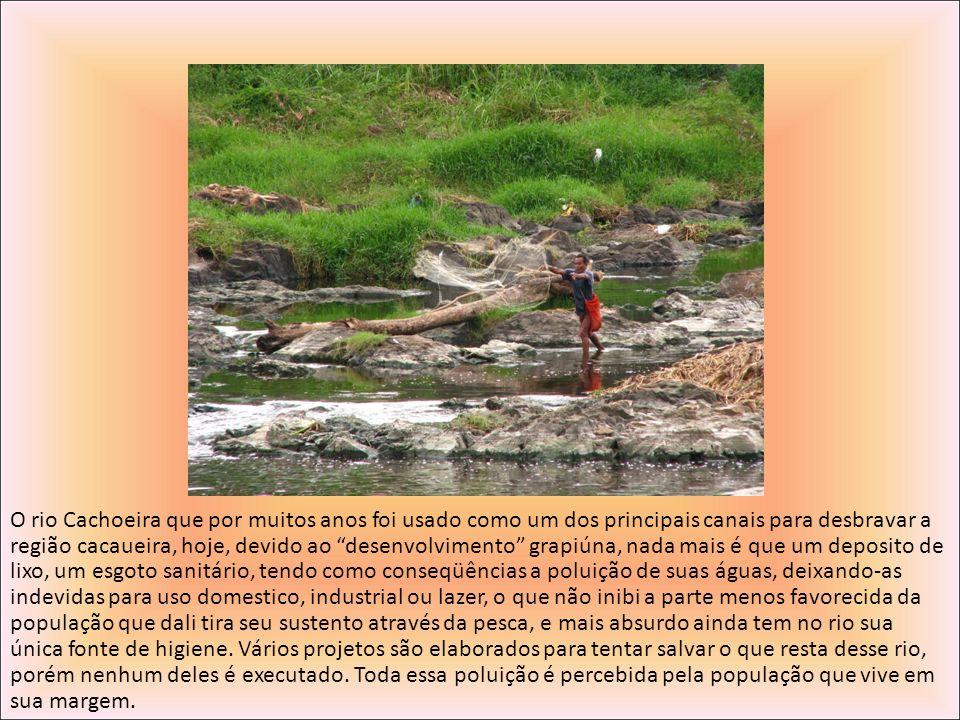 O rio Cachoeira que por muitos anos foi usado como um dos principais canais para desbravar a região cacaueira, hoje, devido ao desenvolvimento grapiúna, nada mais é que um deposito de lixo, um esgoto sanitário, tendo como conseqüências a poluição de suas águas, deixando-as indevidas para uso domestico, industrial ou lazer, o que não inibi a parte menos favorecida da população que dali tira seu sustento através da pesca, e mais absurdo ainda tem no rio sua única fonte de higiene.
