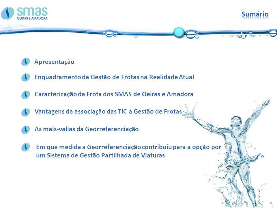 Sumário Caracterização da Frota dos SMAS de Oeiras e Amadora. Enquadramento da Gestão de Frotas na Realidade Atual.