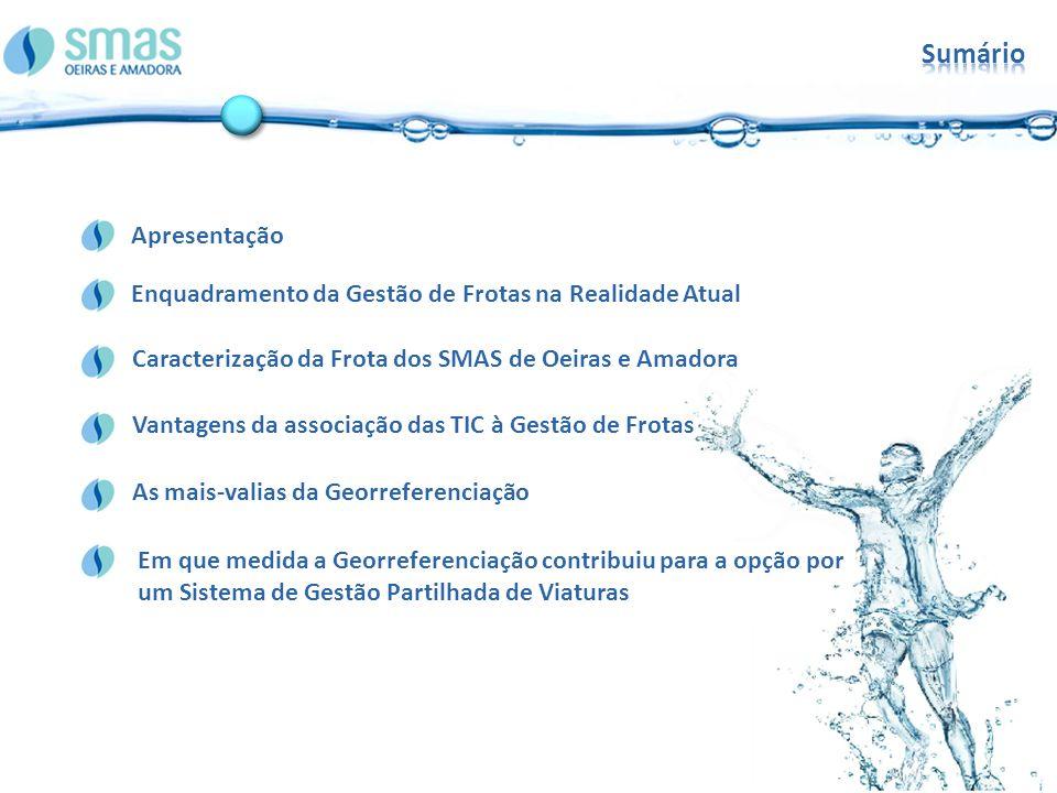 Sumário Apresentação. Enquadramento da Gestão de Frotas na Realidade Atual. Caracterização da Frota dos SMAS de Oeiras e Amadora.
