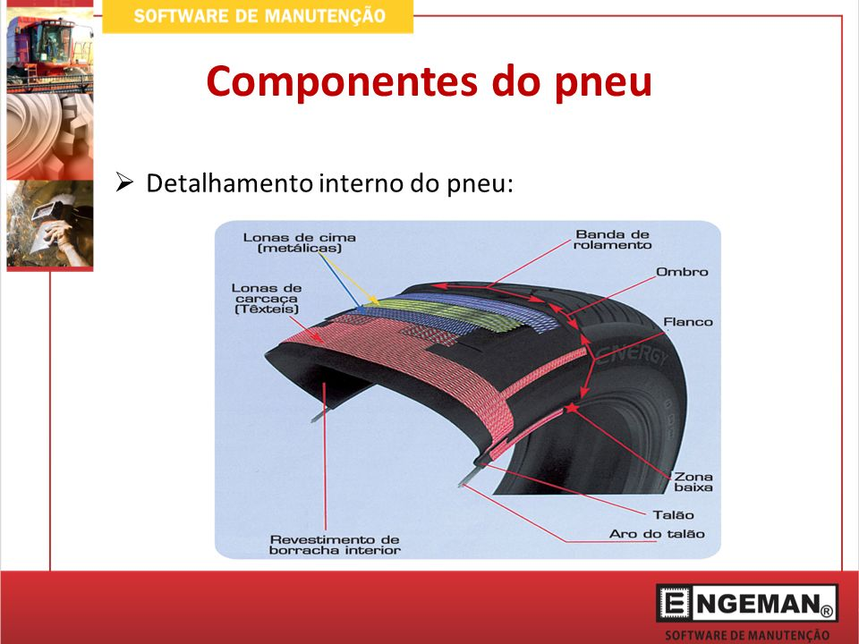 Componentes do pneu Detalhamento interno do pneu: