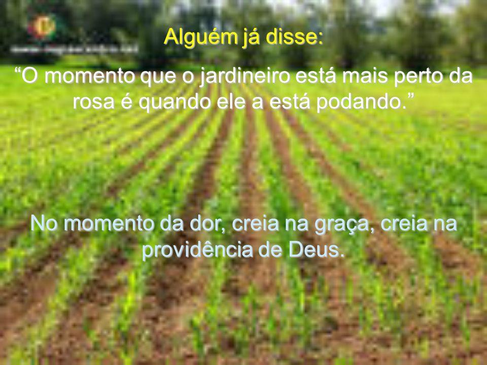 No momento da dor, creia na graça, creia na providência de Deus.