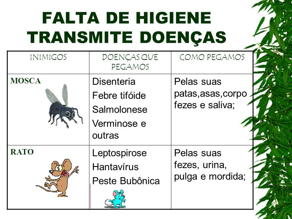 FALTA DE HIGIENE TRANSMITE DOENÇAS