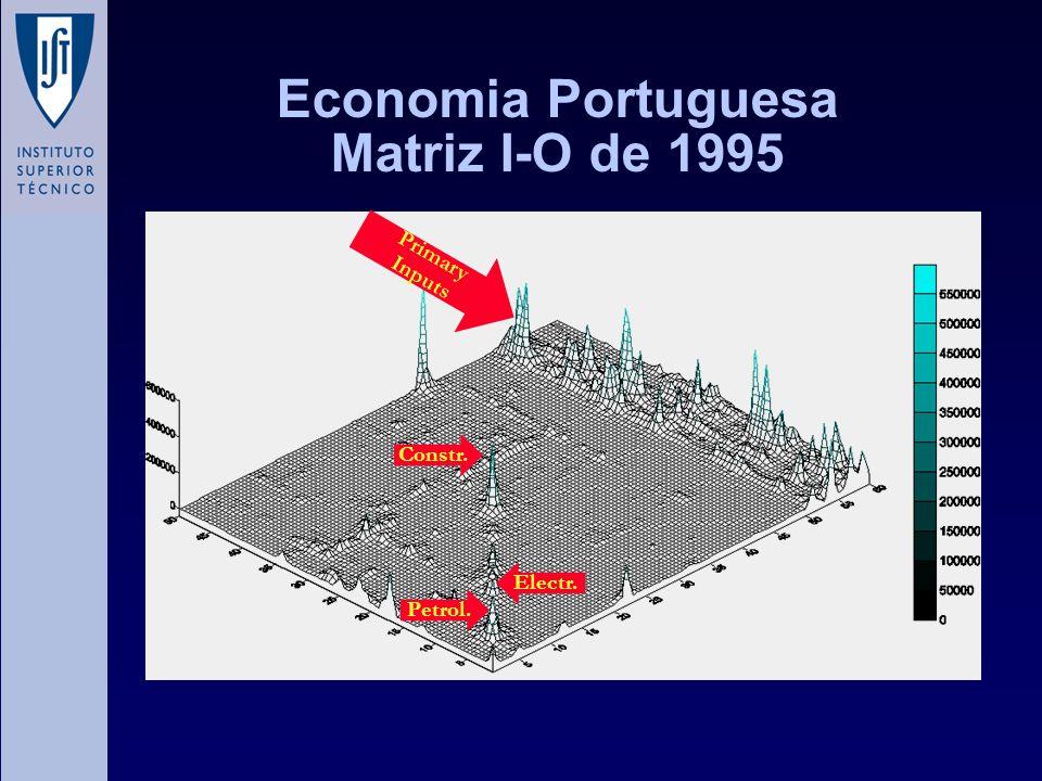 Economia Portuguesa Matriz I-O de 1995