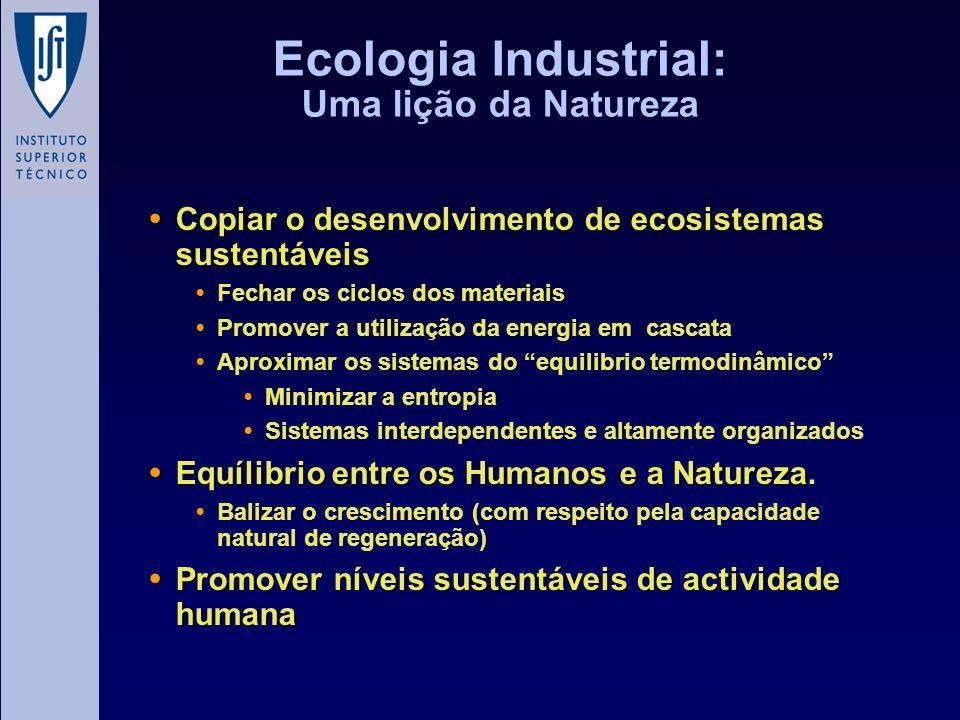 Ecologia Industrial: Uma lição da Natureza