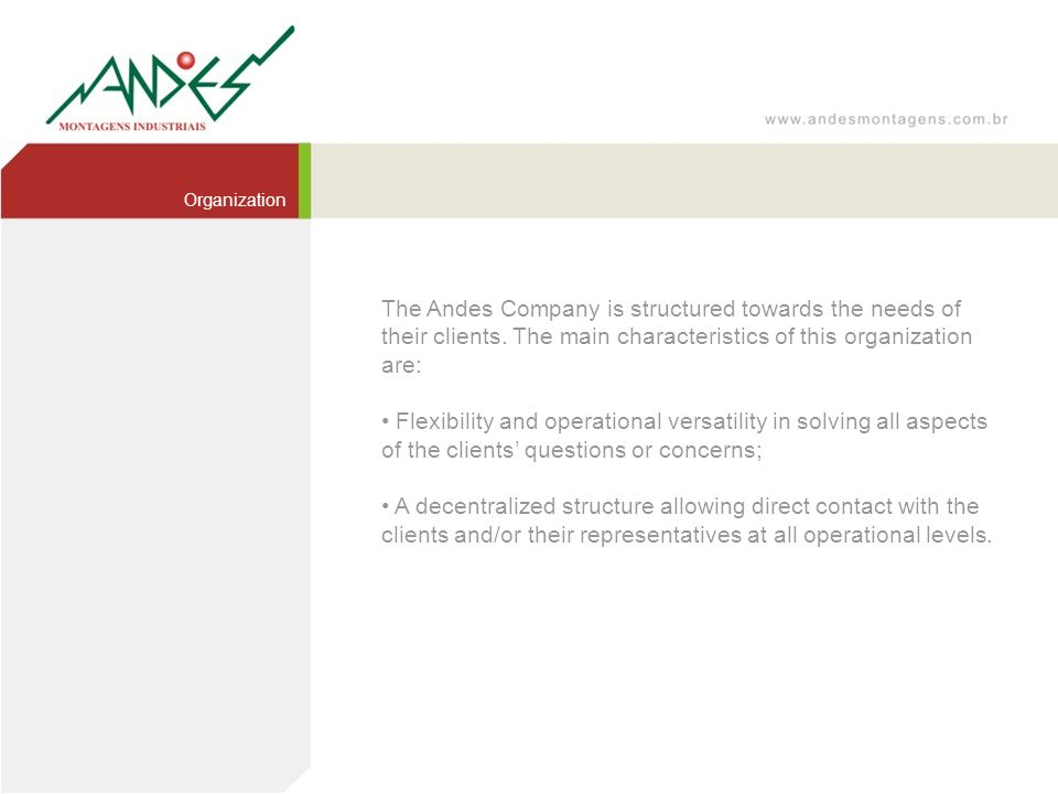 Organization The Andes Company is structured towards the needs of their clients. The main characteristics of this organization are: