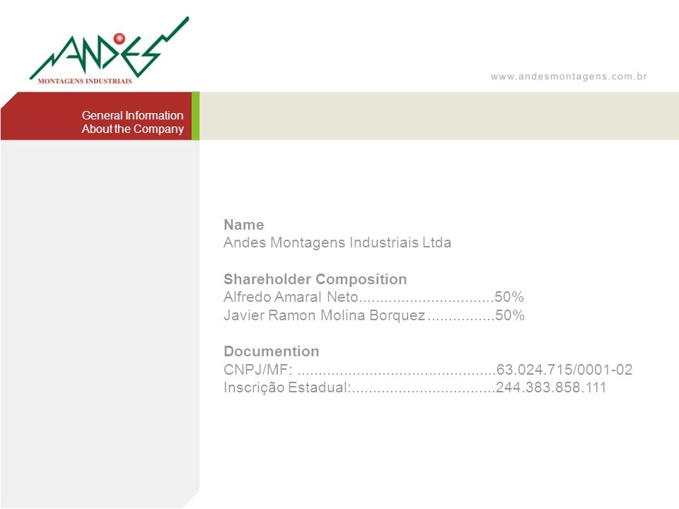Andes Montagens Industriais Ltda Shareholder Composition