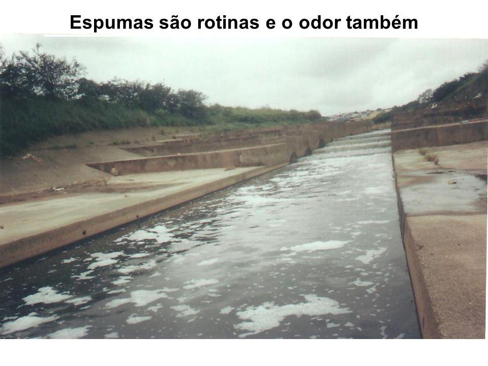 Em 12/04/11 – Espumas são rotinas…!!!
