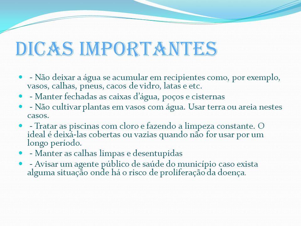 Dicas importantes - Não deixar a água se acumular em recipientes como, por exemplo, vasos, calhas, pneus, cacos de vidro, latas e etc.