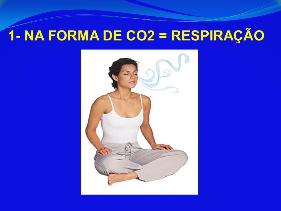 1- NA FORMA DE CO2 = RESPIRAÇÃO