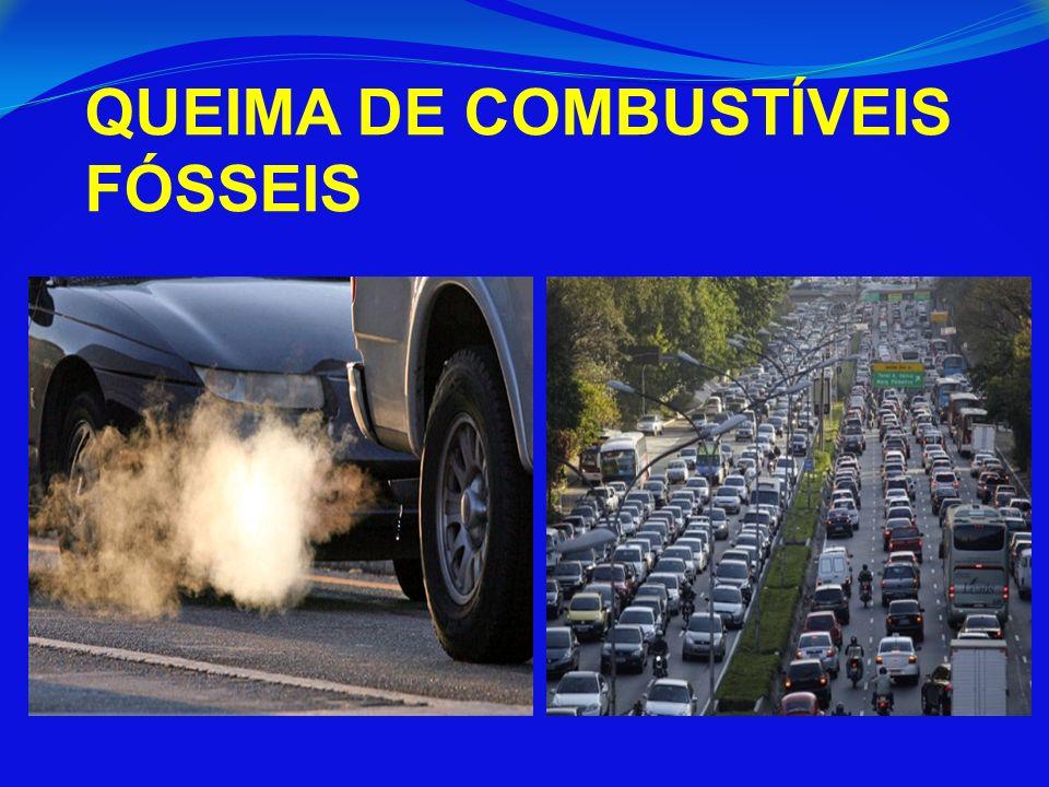 QUEIMA DE COMBUSTÍVEIS FÓSSEIS