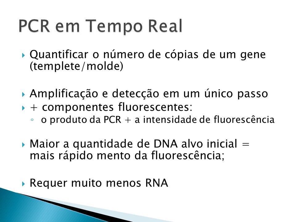 PCR em Tempo Real Quantificar o número de cópias de um gene (templete/molde) Amplificação e detecção em um único passo.