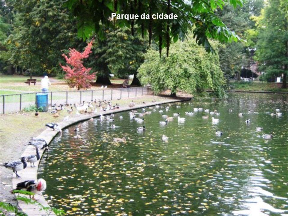 Parque da cidade 24