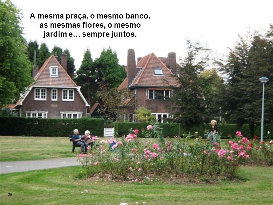 A mesma praça, o mesmo banco, as mesmas flores, o mesmo jardim e… sempre juntos.