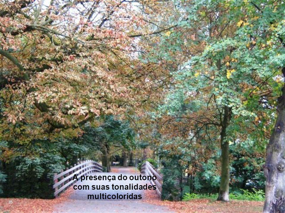 A presença do outono com suas tonalidades multicoloridas