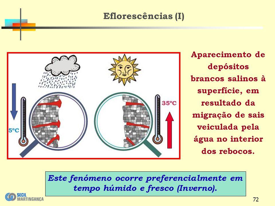 Eflorescências (I)