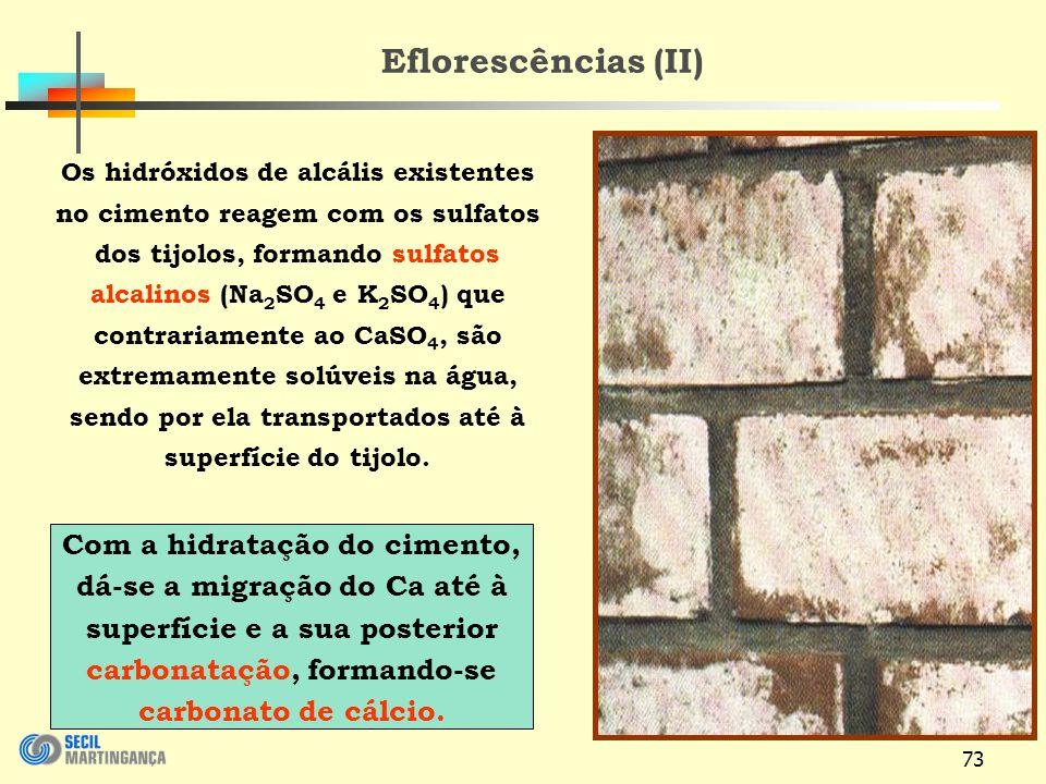 Eflorescências (II)