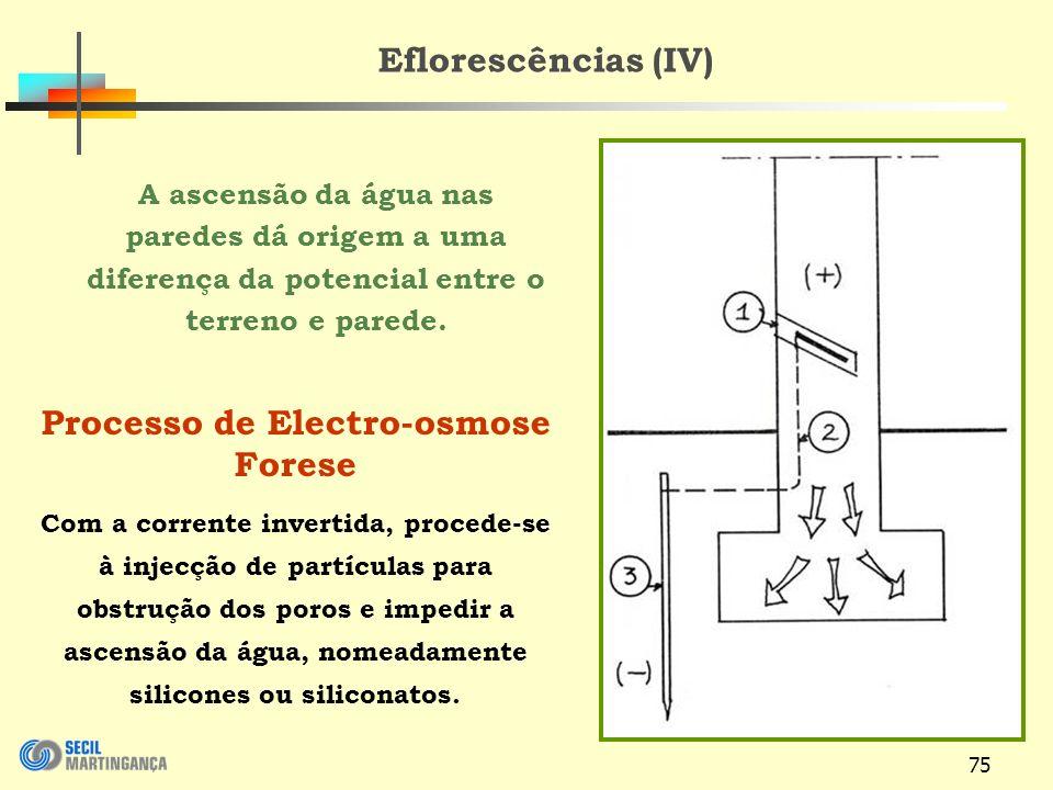 Processo de Electro-osmose Forese