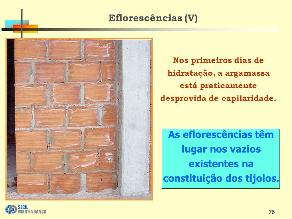 Eflorescências (V) Nos primeiros dias de hidratação, a argamassa está praticamente desprovida de capilaridade.