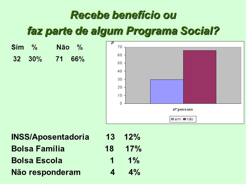 Recebe benefício ou faz parte de algum Programa Social