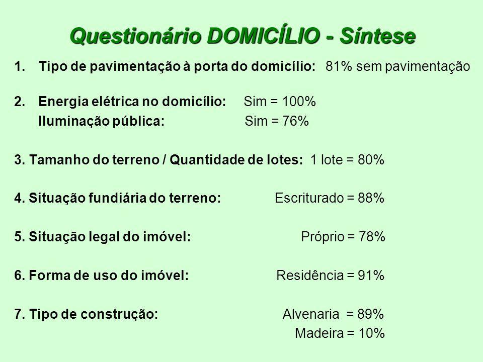 Questionário DOMICÍLIO - Síntese